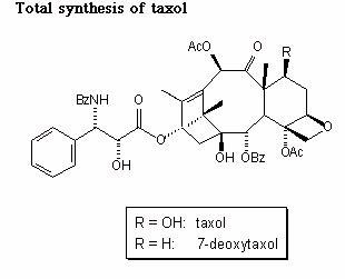Meth Addiction - Term Papers - Goreo - brainiacom